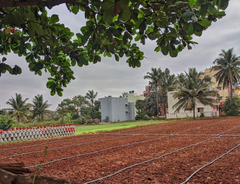 Jordbruksmark i Bangalore i staden ser så vacker ut royaltyfri fotografi