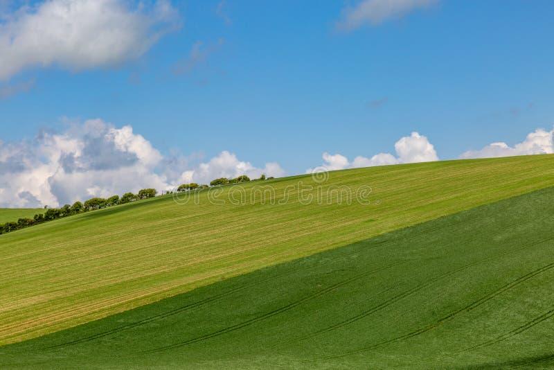 Jordbruksmark i söderna besegrar i Sussex arkivfoto