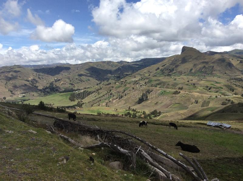 Jordbruksmark II för hög höjd fotografering för bildbyråer