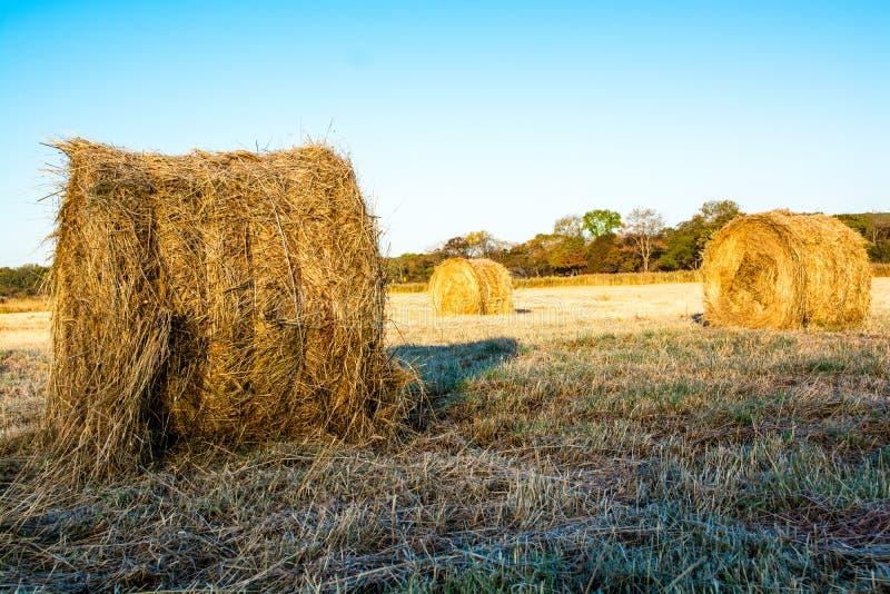 Jordbruksmark med höstackar i höst fotografering för bildbyråer