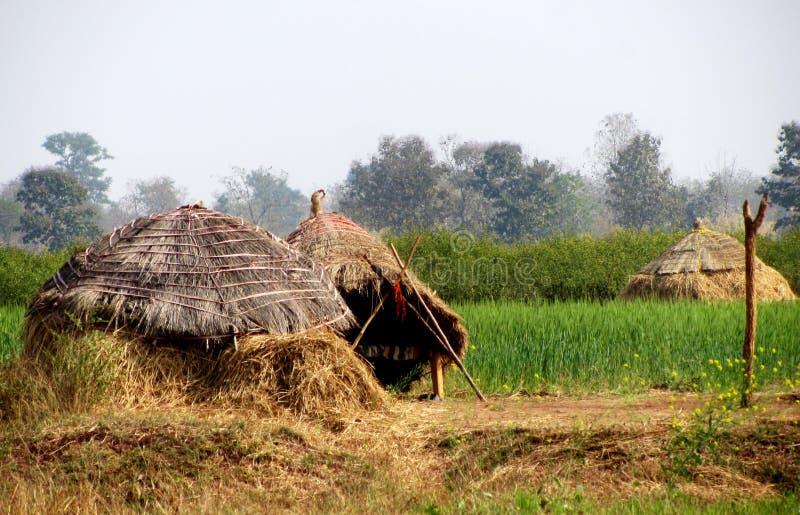 Jordbruksmark och kojor i satpura royaltyfria foton