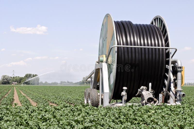 jordbruksmarkbevattning arkivfoto