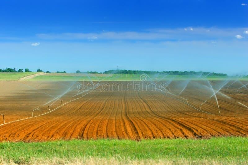 jordbruksmarkbevattning royaltyfria bilder