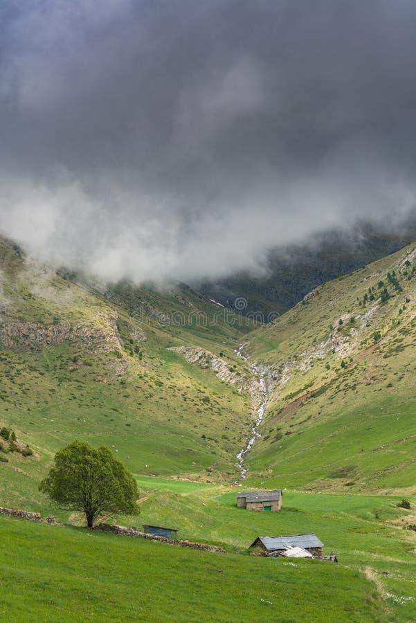 Jordbruksmarker i höga Pyrenees, Andorra royaltyfria bilder