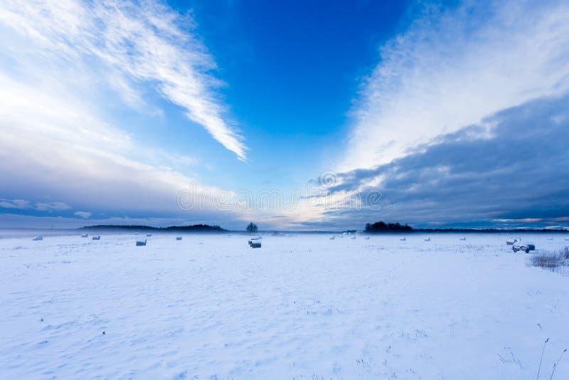Jordbruksmarkfält under snö arkivbilder