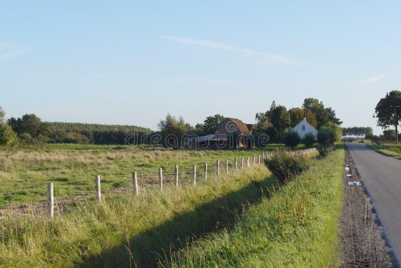 Jordbruksmarksikt i Nederländerna arkivbild