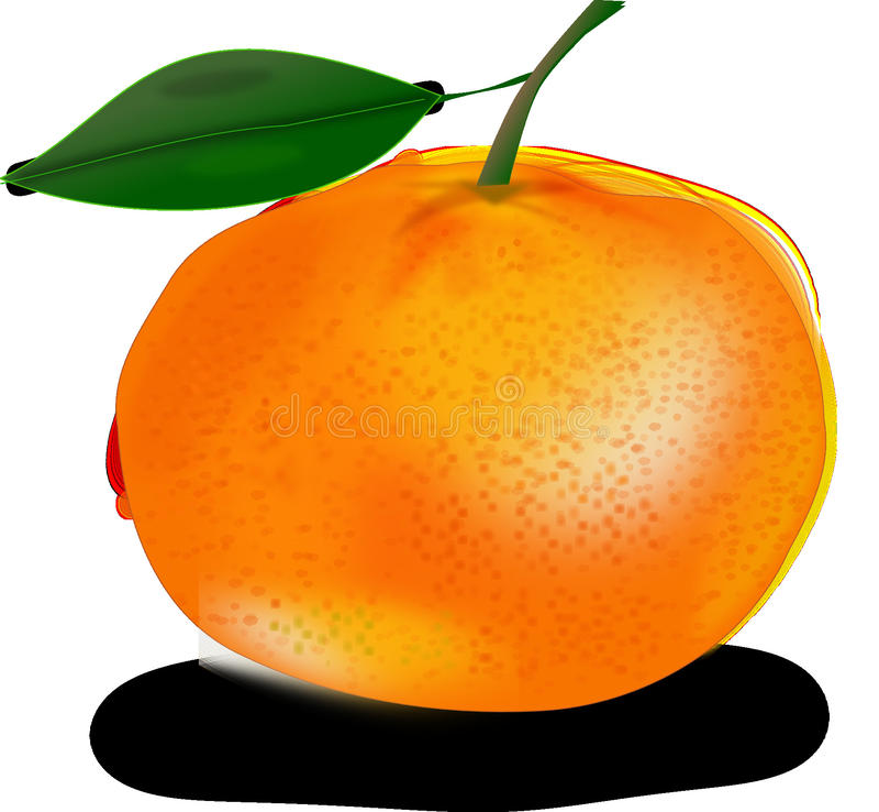 Jordbruksprodukter frukt, mat, citrus arkivbild