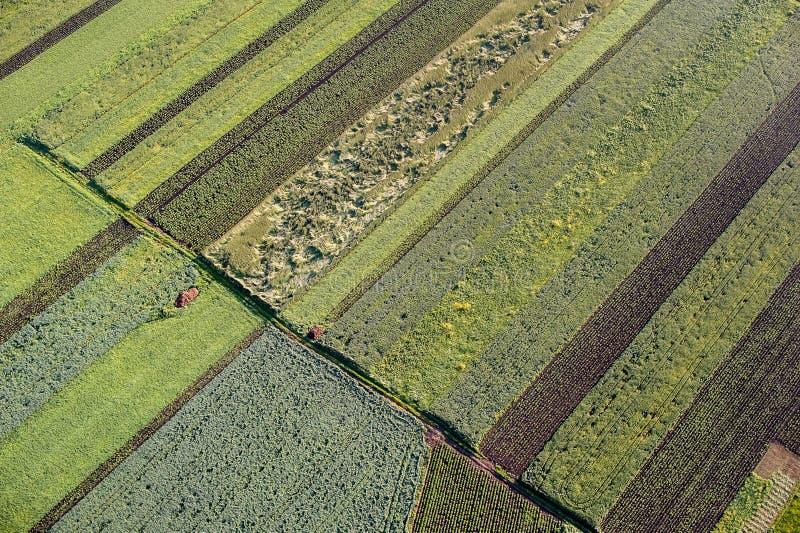 Jordbruksskifte arkivbilder