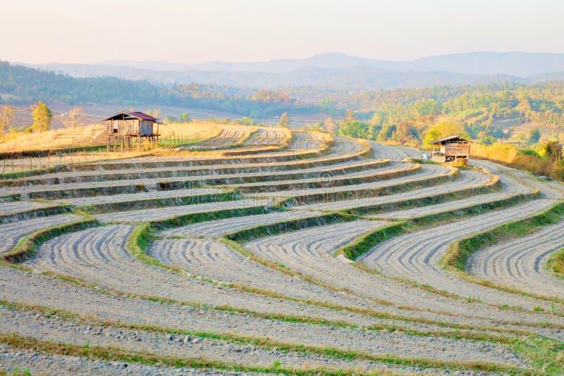 Jordförberedelse för att plantera Grönsakträdgården terrasserar med stugan på berget på Omkoi, Chiang Mai, Thailand royaltyfri foto