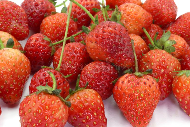 Jordgubbar liten jordgubbe med jordgubbebladet på vit bakgrund royaltyfri foto