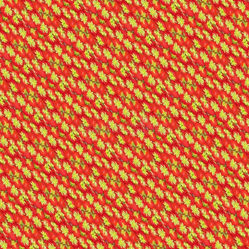 Jordgubbar mönstrar och bakgrund arkivfoton