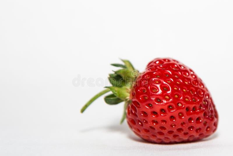 jordgubbe royaltyfri foto
