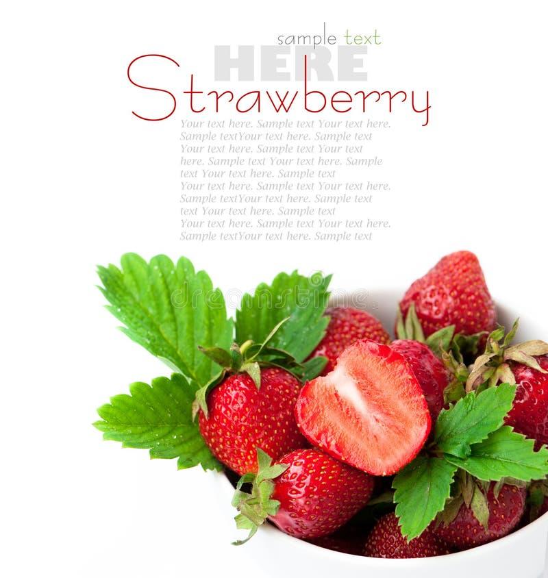 jordgubbe för leaf för bärblommagreen arkivfoton