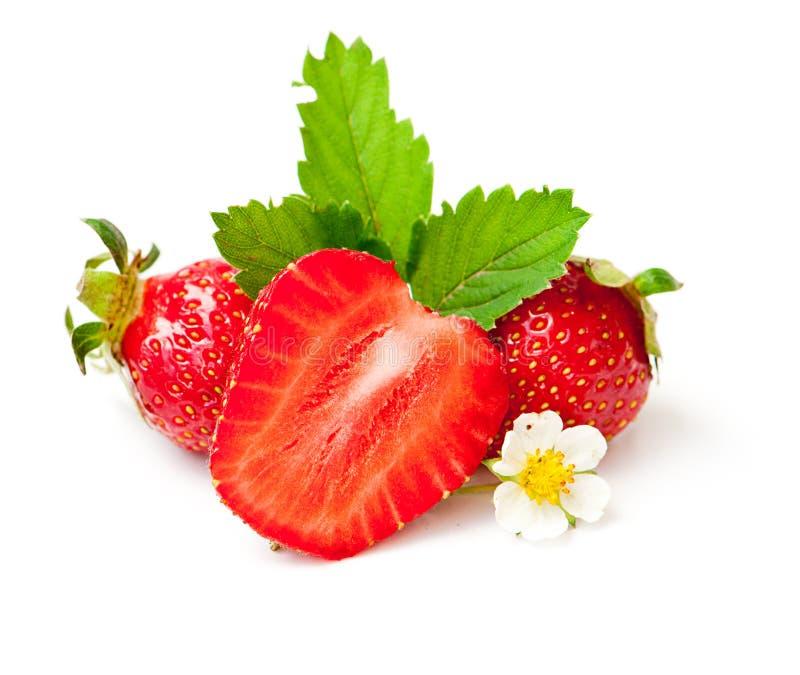 jordgubbe för leaf för bärblommagreen royaltyfri foto