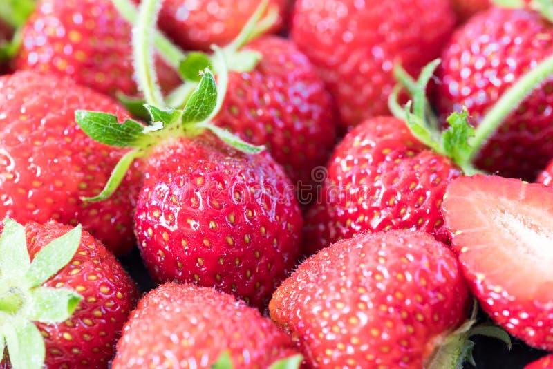 jordgubbe Rött strewberry jordgubbar i olika positioner royaltyfria bilder