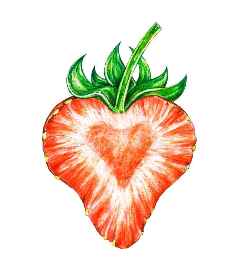 Jordgubbeförälskelse Teckning för vattenfärg av jordgubben royaltyfri illustrationer