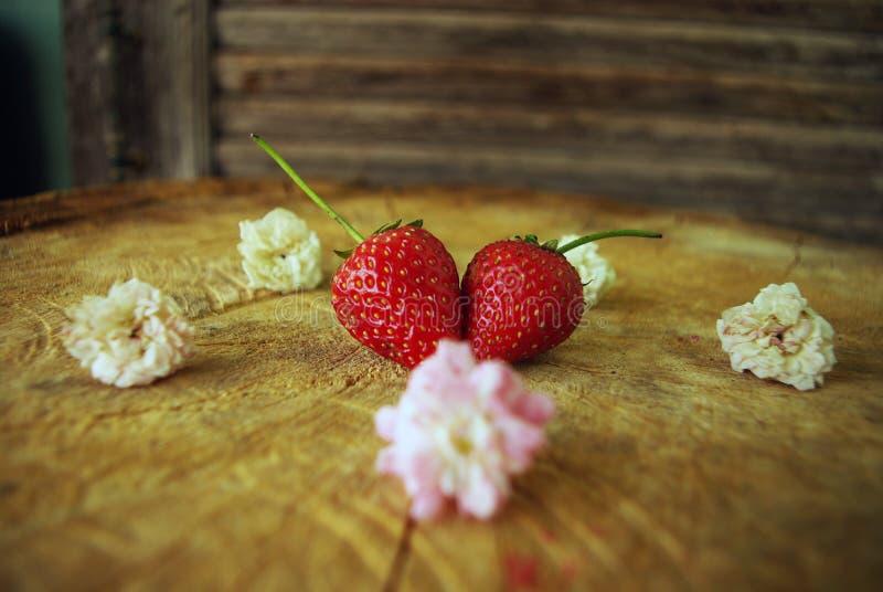 Jordgubbehjärta av Mary förälskelse att äta på tabellen fotografering för bildbyråer