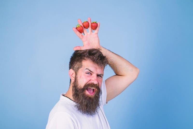 Jordgubbekonungbegrepp Man upps?kt hipsterh?llhand med jordgubbar ovanf?r huvudet som kronan Lyckligt sk?ggigt f?r Hipster arkivbild