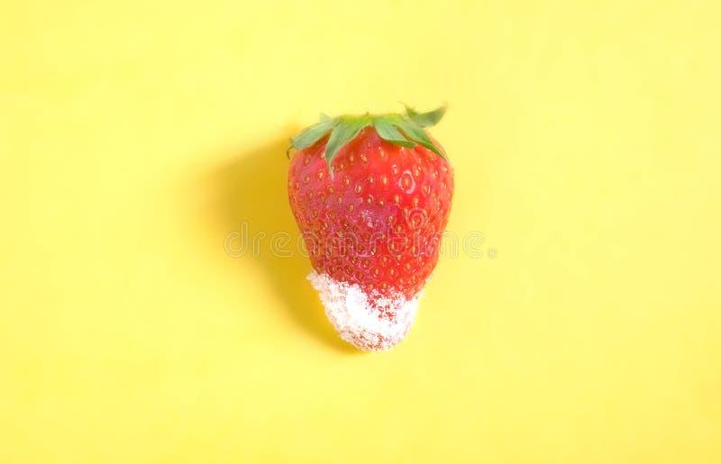 jordgubbesocker arkivfoton