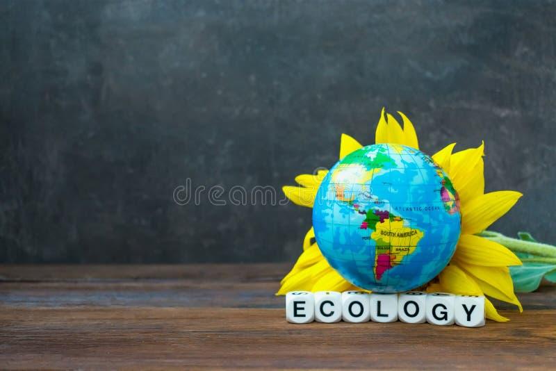 Jordjordklotbollen mot den gula solrosen och ordecoloen arkivfoton