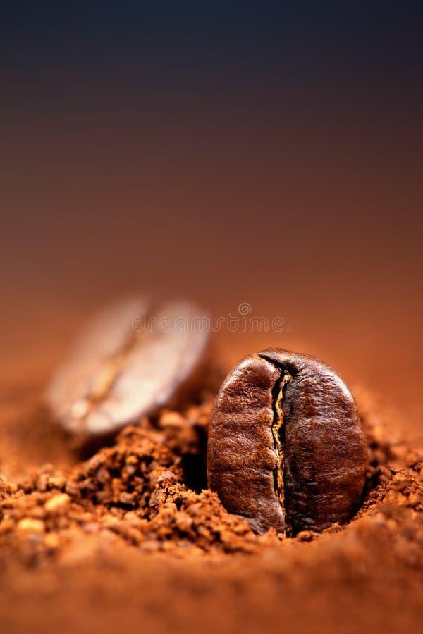Jordkaffe med grillade kaffebönor, copyspace Espresso T royaltyfri fotografi