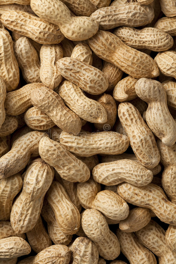 jordnötter arkivbild