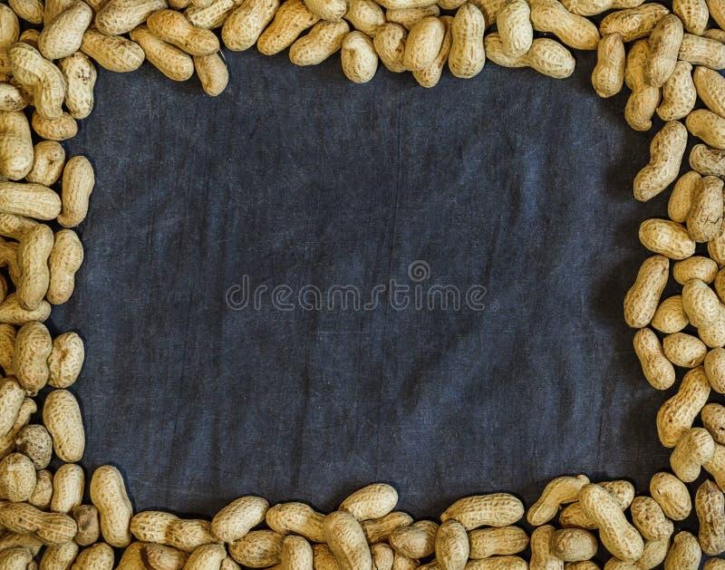 Jordnötter i skal på mörk textilbakgrund arkivbilder