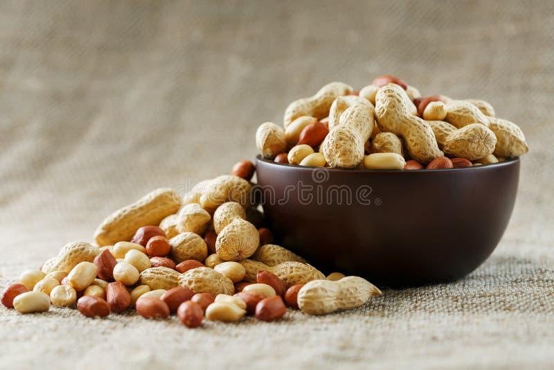 Jordnötter i skalet och den skalade närbilden i koppar Grillade jordnötter i deras skal och skalade mot en brun torkduk arkivfoton