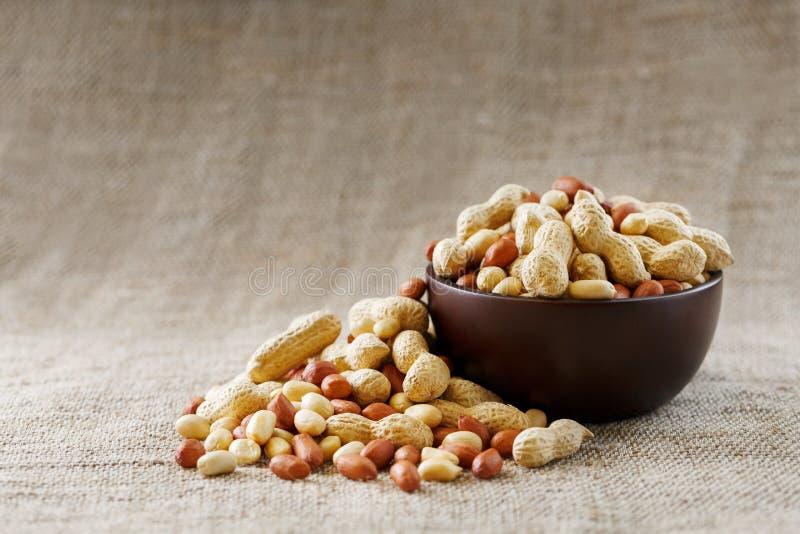 Jordnötter i skalet och den skalade närbilden i koppar Grillade jordnötter i deras skal och skalade mot en brun torkduk royaltyfri fotografi
