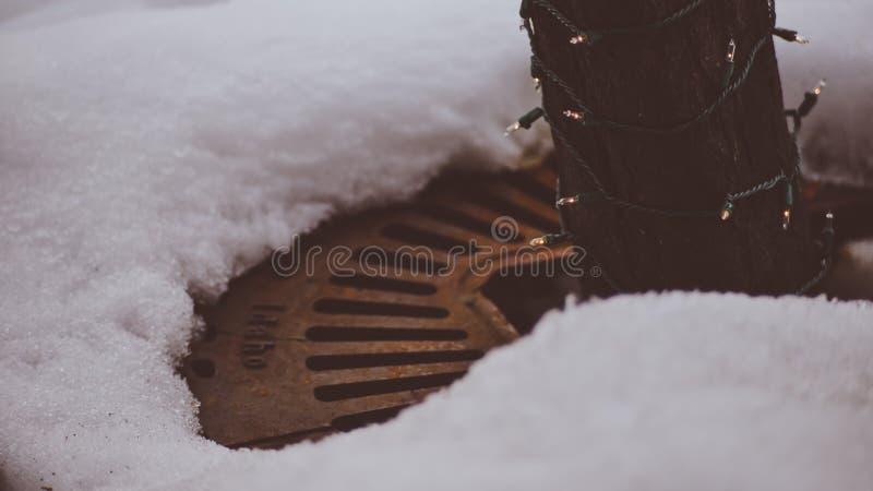 Jordräkning för Retro tappning som täcker jordningen vid trädet med snö och is omkring på gatan av Coeur D ` Alene Idaho royaltyfria foton