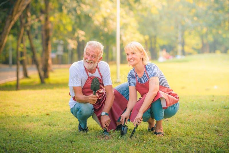 Jornal idoso da leitura dos pares no jardim no por do sol Amor da pessoa idosa dos pares do conceito imagem de stock