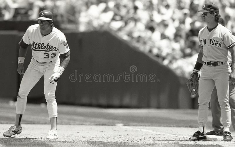 Jose Canseco and Don Mattingly royalty free stock photo