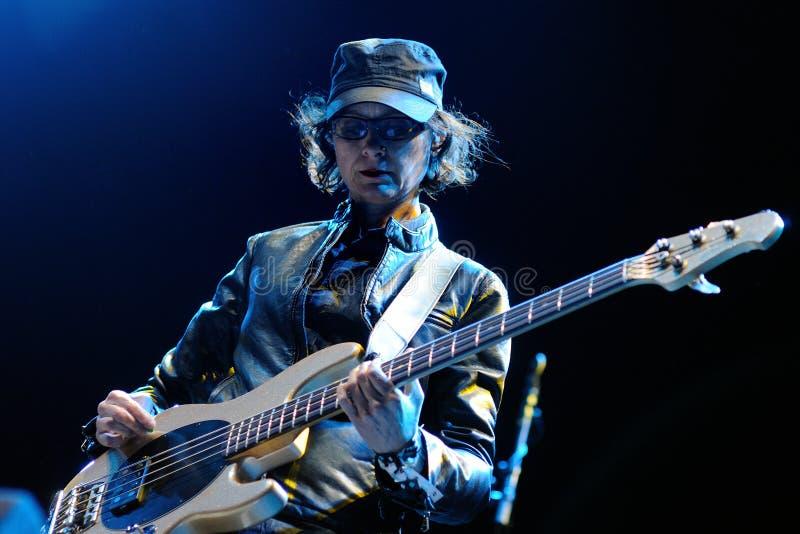 Josephine Wiggs, Bass-Spieler für die Brüter versehen mit einem Band, führen an Ton-Festival 2013 Heinekens Primavera durch lizenzfreie stockfotografie