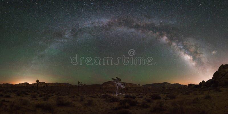 Joshua drzewa parka narodowego Milky sposobu panorama zdjęcie royalty free