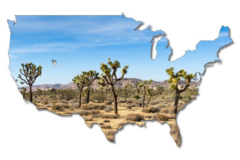 Joshua träd i nationalparken för joshua träd, Kalifornien, USA arkivfoto