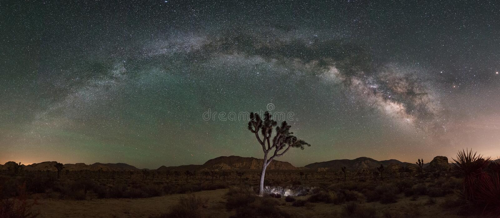 Joshua Tree Milky Way Panorama imagem de stock royalty free
