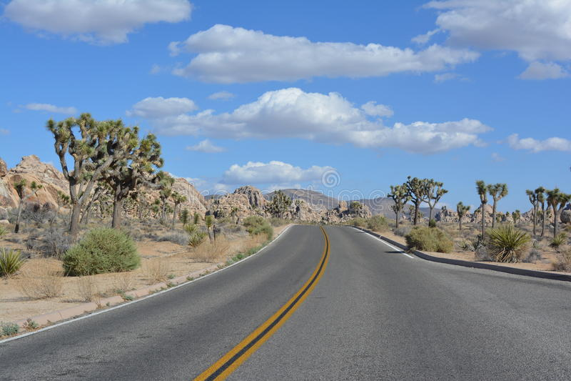 Joshua Tree National Park Desert, California. Joshua Tree Desert National Park road in California royalty free stock photography