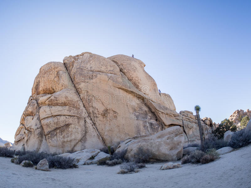 Joshua Tree National Park. Joshua Tree National Park is immense, nearly 800,000 acres, and infinitely variable. It can seem unwelcoming, even brutal during the royalty free stock image