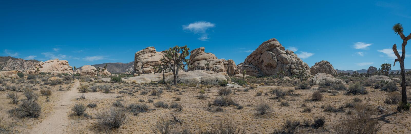 Joshua Tree National Park Panorama imagem de stock royalty free