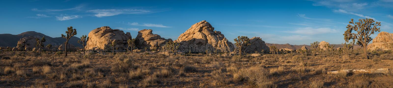 Joshua Tree National Park Panorama royalty-vrije stock fotografie
