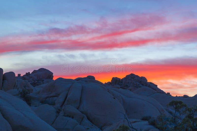 Joshua Tree National Park Sunset foto de stock royalty free