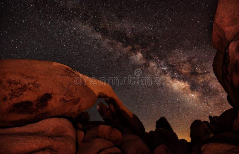 Joshua Tree Starry Night imágenes de archivo libres de regalías