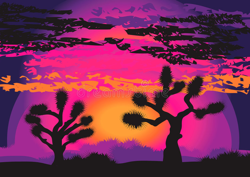 Joshua trees in purple stock photo