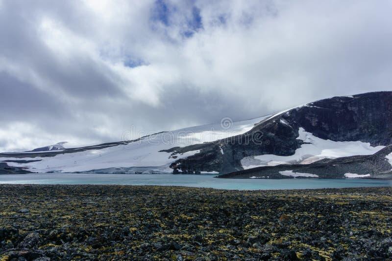 Jotunheimen Nigardsbreen glaciär, Nigardsvatnet Jostedalsbreen nationalpark, Norge royaltyfri bild