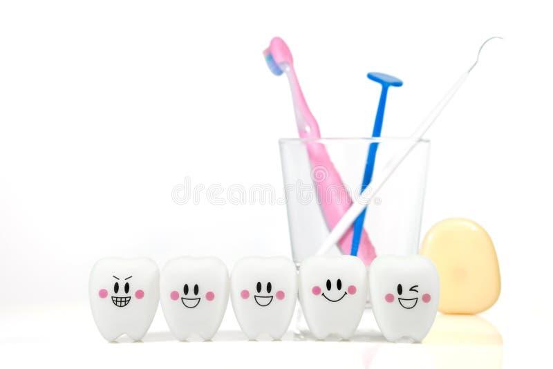 Joue des dents dans une humeur de sourire d'isolement sur un fond blanc images libres de droits