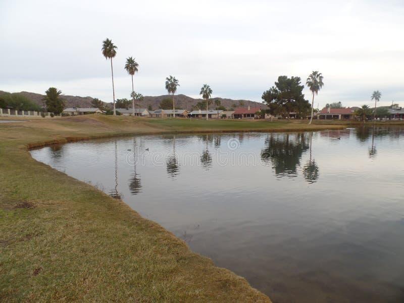 Jouer au golf de l'Arizona est amusement photographie stock