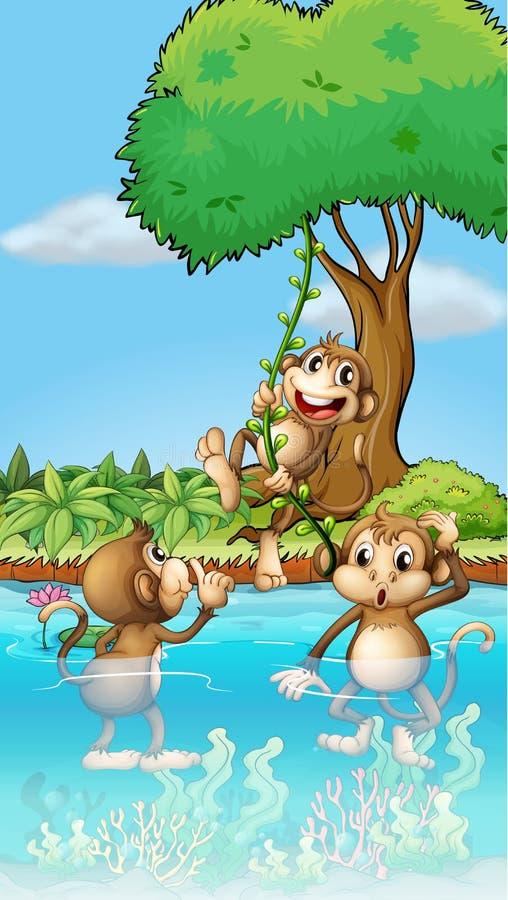 Jouer de trois singes illustration de vecteur