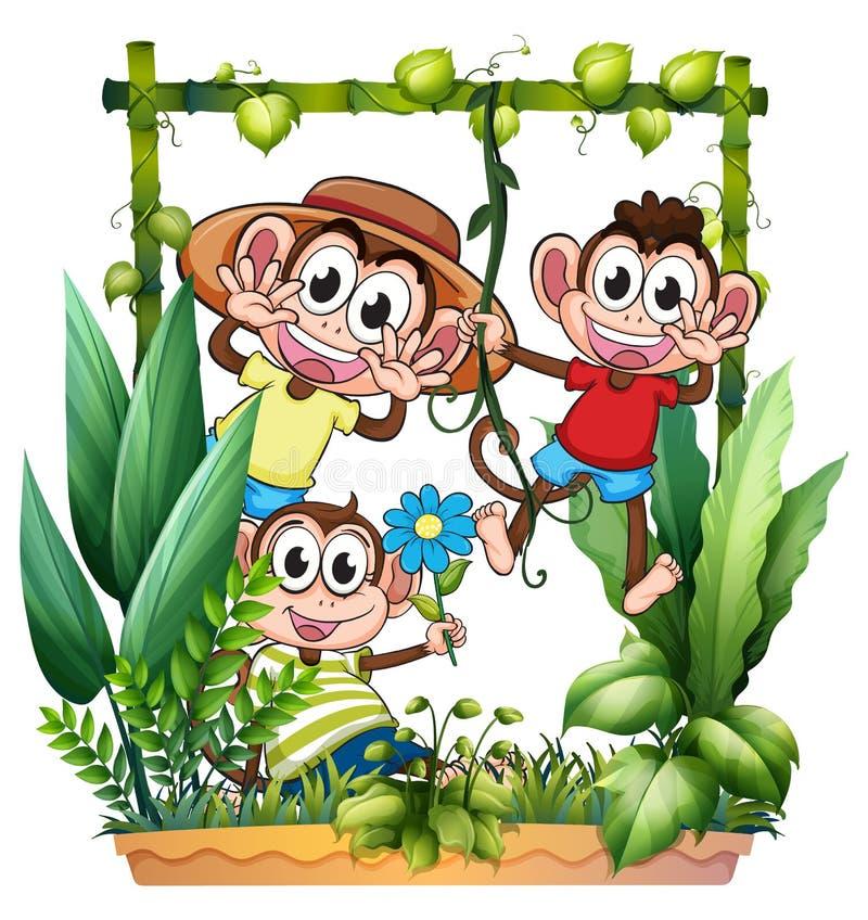 Jouer de trois singes illustration libre de droits
