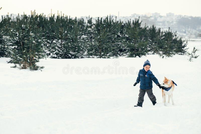 Jouer fonctionnant de garçon heureux d'enfant de Noël avec le chien d'Akita Inu dessus images libres de droits
