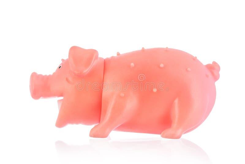 Jouet en caoutchouc de porc pour des chiens photo libre de droits